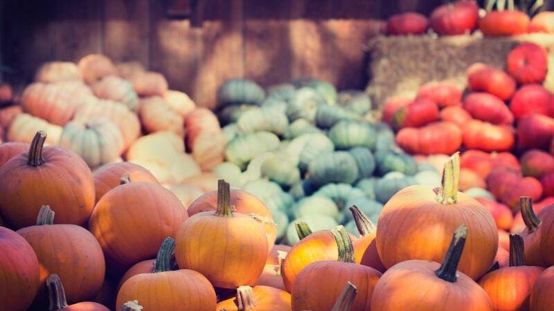 Månedsplan #10 – Oktober 2019 – Rentene stiger